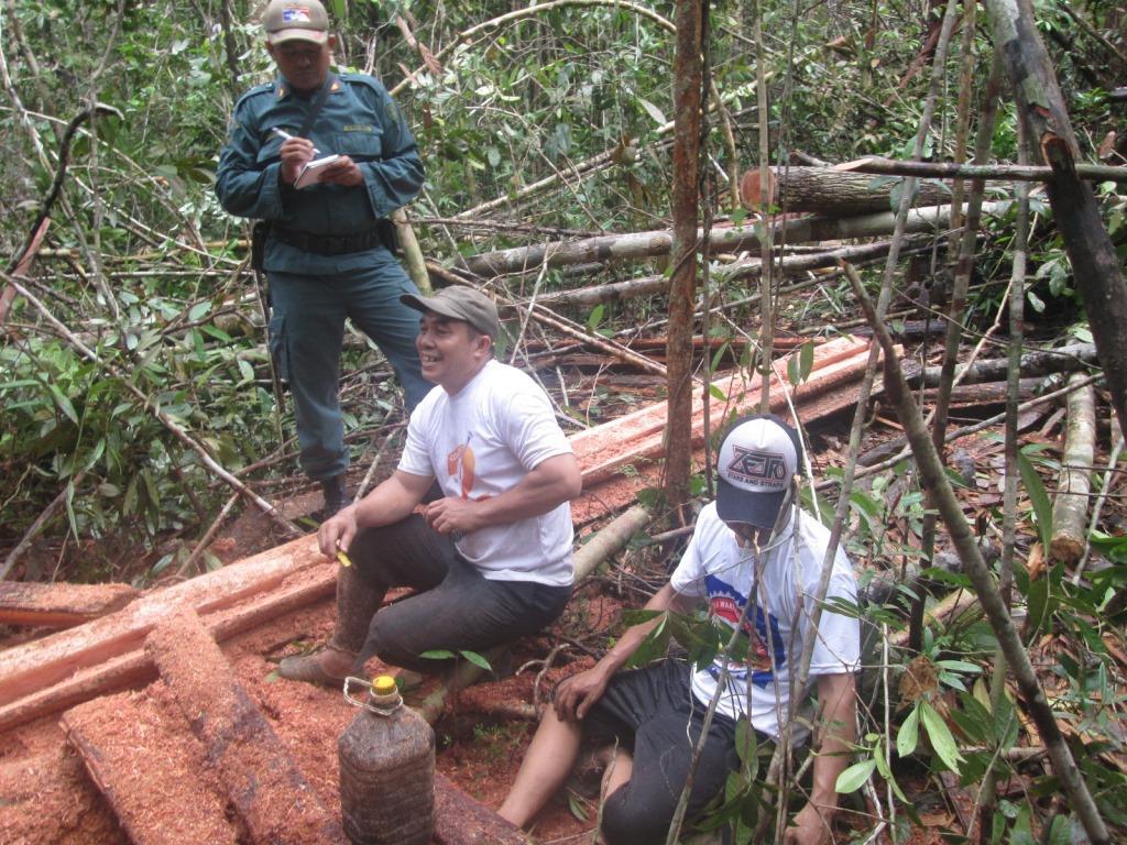 Sy (48 thn) dan Bh (36 thn) asal Kecamatan Paloh, Kabupaten Sambas tertangkap tangan oleh Tim SPORC saat melakukan pembalakan liar di TWA Gunung Melintang.
